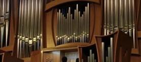 organ__